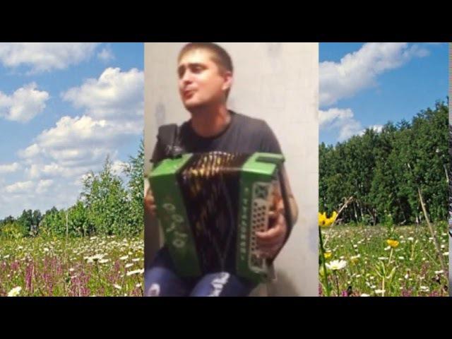 Максим Никулин Поляна лесная дворовая