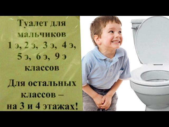 Элитные туалеты в донатной школе
