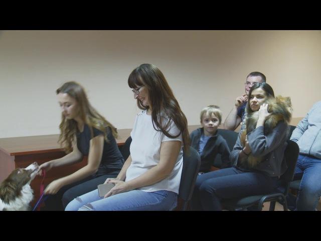 Померанского шпица Пеппи признали лучшим «новогодним чудом»
