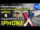 Электронный концлагерь Apple надзиратель iPhone X Познавательное ТВ Артём Войтенков
