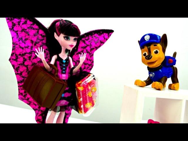 Игры для девочек Монстер Хай: Дракулаура потеряла паспорт!