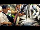 Seafood Market at Sihanoukville in Cambodia | Phsar Leu Market Krong Preah Sihanouk