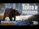 Стрим - theHunter Call of the Wild - Тайга и медведи - Новое DLC
