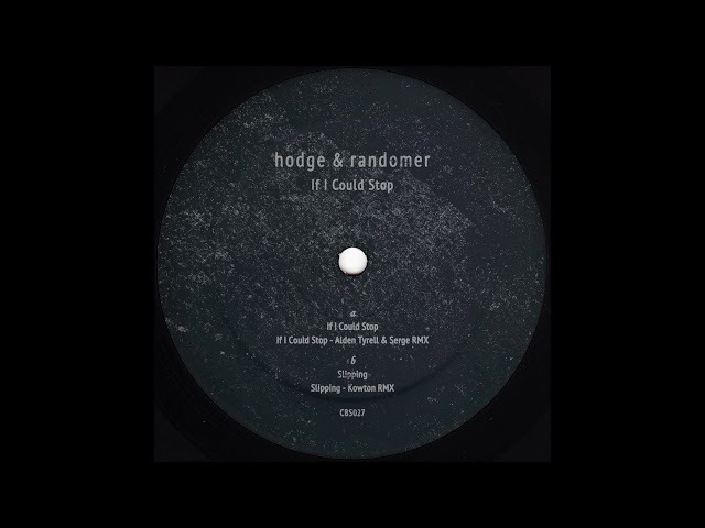 Hodge Randomer If I Could Stop Tyrell Serge Remix