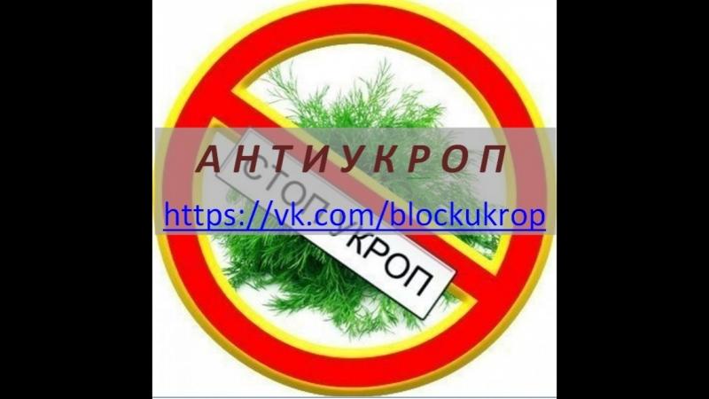 На Харківщині СБУ блокувала постачання автомобілів для бойовиків «ЛНР»