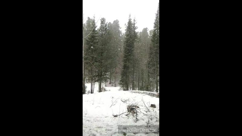 Снегопад_30.04.2018_HD
