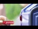 Вна украине создали робота-побирушку