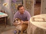 Костя привёл в дом собаку ... 1 sezon;