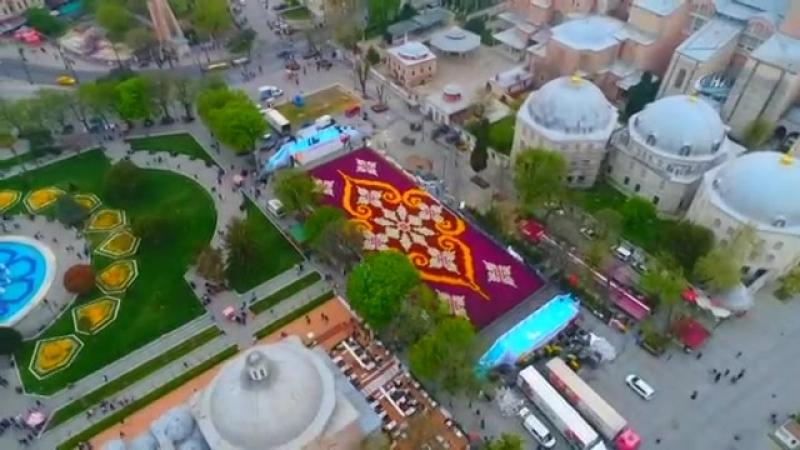 13-й фестиваль тюльпанов в Стамбуле