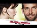 Смотрим кино: Мой парень - псих / Silver Linings Playbook (2012)