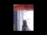 Gaza - Британский правозащитник снял видео он последовал за детьми послÐ