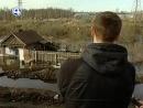 спасение собаки Екатеринбург