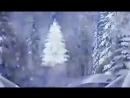 Video-bb31d833cc1d945caa6297ca64460031-V-2.mp4