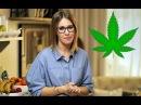 Ксения Собчак за легализацию марихуаны. Почему легалайз в России невозможен.