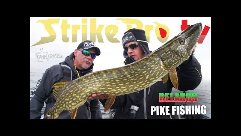 Strike Pro TV - Northern Pike Fishing in Belarus