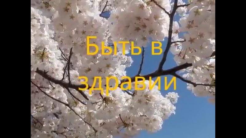 Быть в здравии. Богданова Любослава