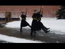 Почётный караул. Смена караула. Красная площадь. Москва (12.02.2017)