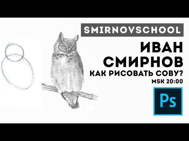 КАК РИСОВАТЬ СОВУ Иван Смирнов. Smirnov School