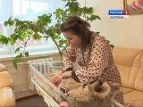 Жители Костромской области начали подавать заявления на ежемесячные выплаты по...
