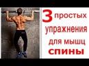 Как Накачать Спину Без Железа/ Тренировка спины - 3 Простых Упражнения rfr yfrfxfnm cgbye ,tp tktpf/ nhtybhjdrf cgbys - 3 ghjcn