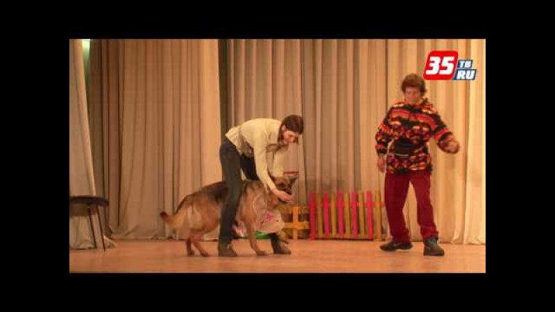 Череповецкий Театр собак пригласил зрителей в Школу доброты