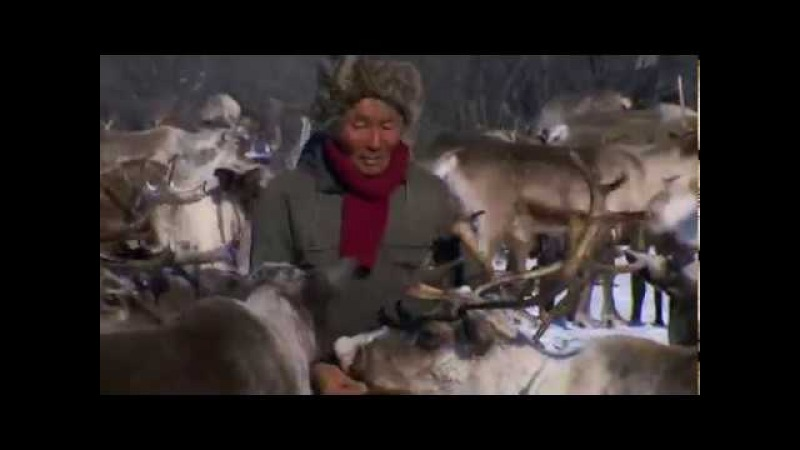 Россия открая до края Сибирь