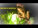 Забавные ФОКУСЫ от маленького гения видеомонтажа! Детские фокусы и забавная маг...