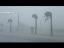 Ураган моё соло т