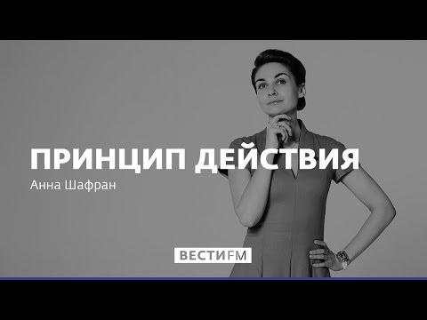 Из наших соседей сооружают анти-Россию * Принцип действия (24.11.2018)