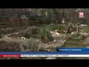 В одном из дворов Симферополя вандалы срубили ель и выкопали саженцы молодых деревьев В одном из дворов крымской столицы неизвес