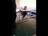 Ali Nikotin - Live