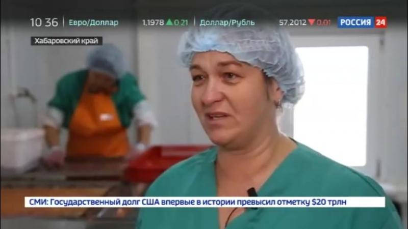 Новости на «Россия 24» • Крупные рыбопромышленники оставили жителей Приамурья без улова