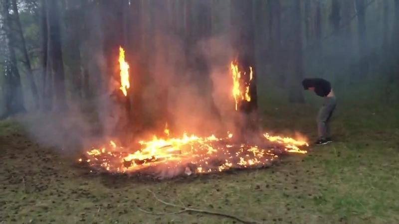 Возгорание в лесу - мост на Краса увала Нефтекамск - 15 мая 2018