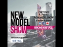 New Model Show, 19.04