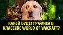 Какой же будет Графика в Классике World of Warcraft
