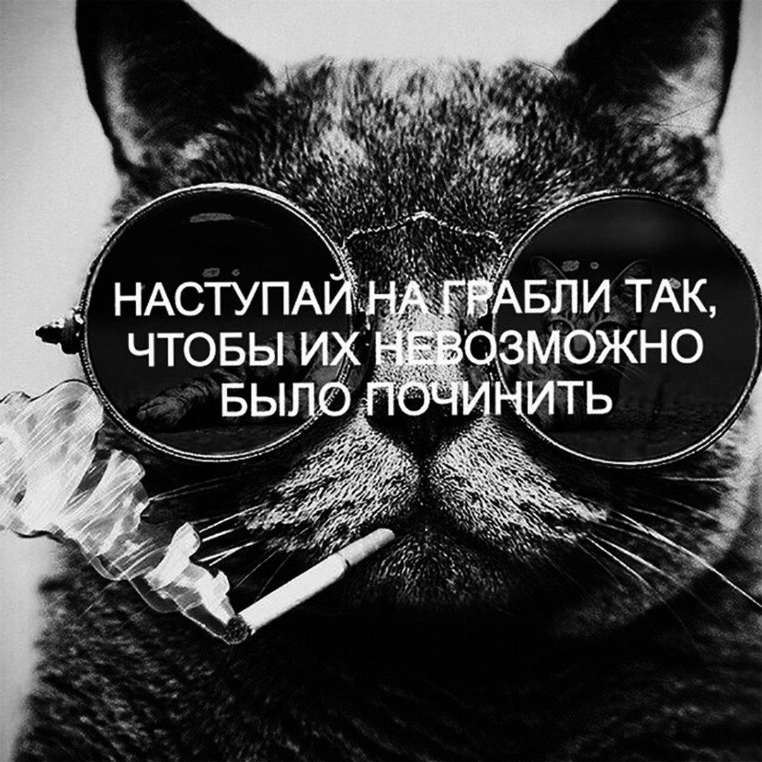 _C2Aw1OOaok.jpg