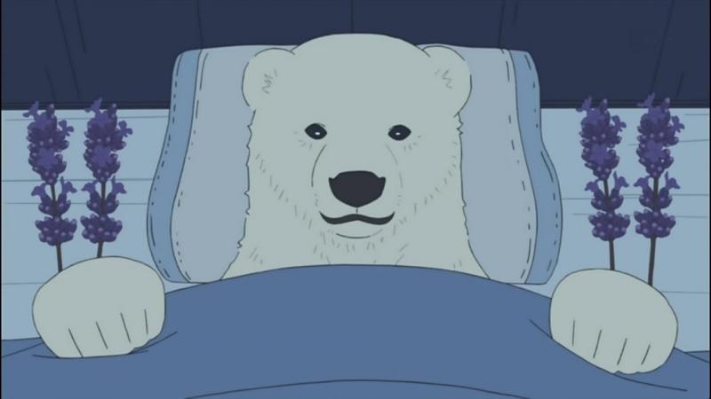 Polar bear cafe | как уснуть - совет от гризли