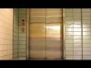 Gangnam Style - USNA Spirit Spot - Go Navy ( 240 X 426 ).mp4