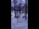 Вид из Города Острова из Псковской Облости