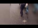 Сотрудники МВД России предотвратили заказное убийство семьи на Кубани