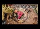 Дикая кухня - ЗАПЕЧЕННОЕ МЯСО В КАМЕННОЙ ЯМЕ | BUSHCRAFT COOKING IN STEAM PIT