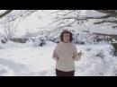 Анонс программы Дорогая переДача Эфир 18 февраля в 11 20 Первый канал Соты