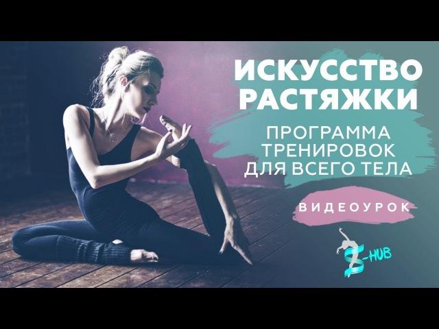 S HUBme   Искусство растяжки   Программа тренировок для всего тела  
