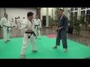 Karate Kobujutsu