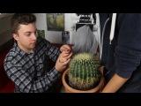 WHAT'S IN MY HAND CHALLENGE? w/ Kwebbelkop & Jelly