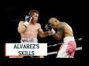 ALVAREZ COTTO Keys and tactics to win I ALVAREZ COTTO Teclas y tácticas para ganar
