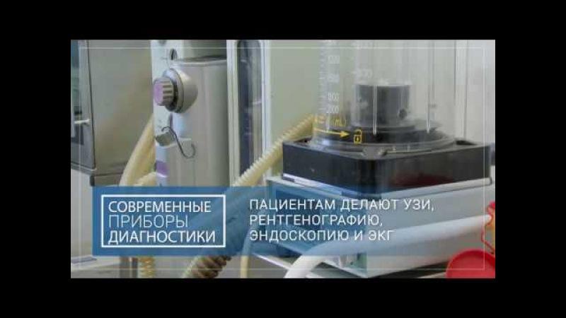 Ветеринарная клиника г. Всеволожск
