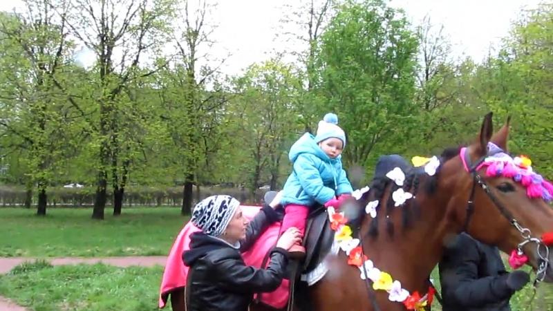 Императорский взгляд с коня