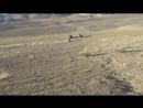 Путь на Джазатор через Теплый Ключ фильм Алекса
