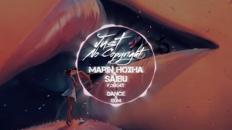 Marin Hoxha SAIBU - Forget (Just No Copyright ツ